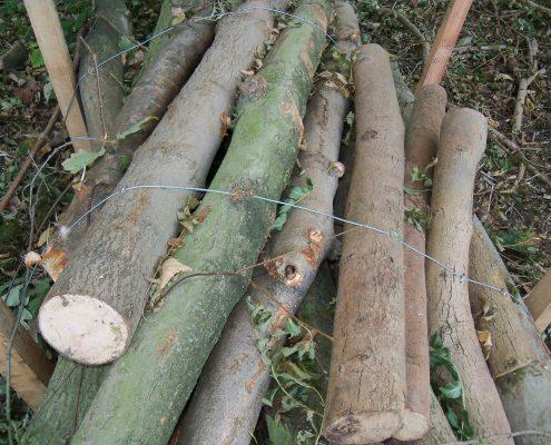 Careful land mitigation works