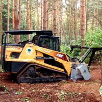 skid steer working in the forest