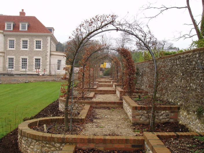 image of Beech arches on planting