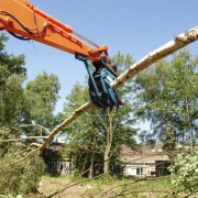 Timber grab listing whole tree