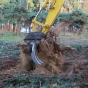 Root rake grubbing up tree stumps