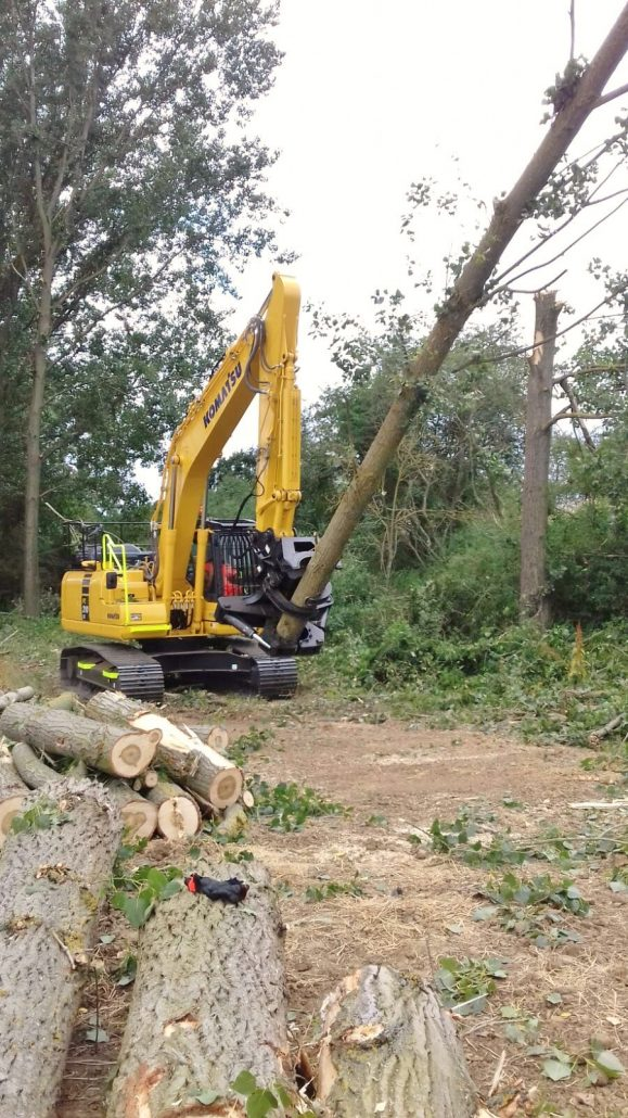 Komatsu PC210 Excavator for Tree Clearance | Practicality Brown