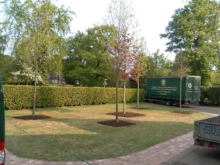 Complete garden projects