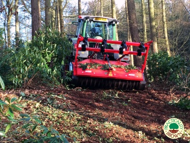 Tree clearance with Fendt mulcher