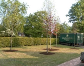 Instant landscape specialists