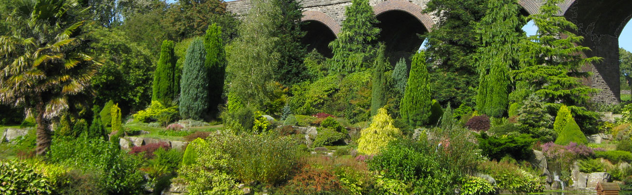 beautiful icture of evegreen trees and hedges underneath a railway bridge