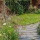 RHS Hampton Court 2018 Practical Instant Hedge
