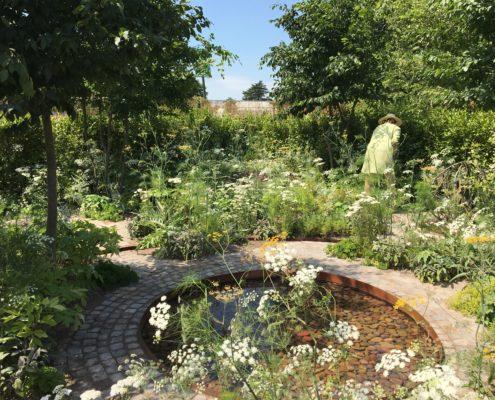 RHS Hampton Court Practical Instant Hedge