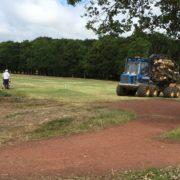 Tree clearance alongside golfers
