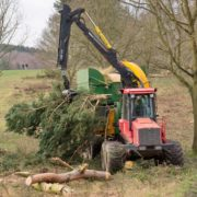 Tree clearance with forestry forwarder