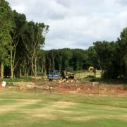 \tree clearance on golf course