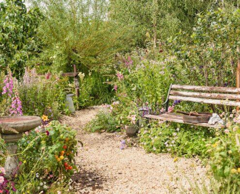 Practical Instant Hedge for BBC Springwatch garden