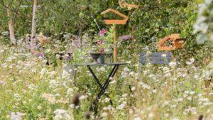 BBC Springwatch Garden RHS Hampton
