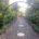 Childrens Garden at Kew Gardens
