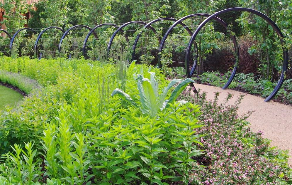 Childrens Garden at Kew